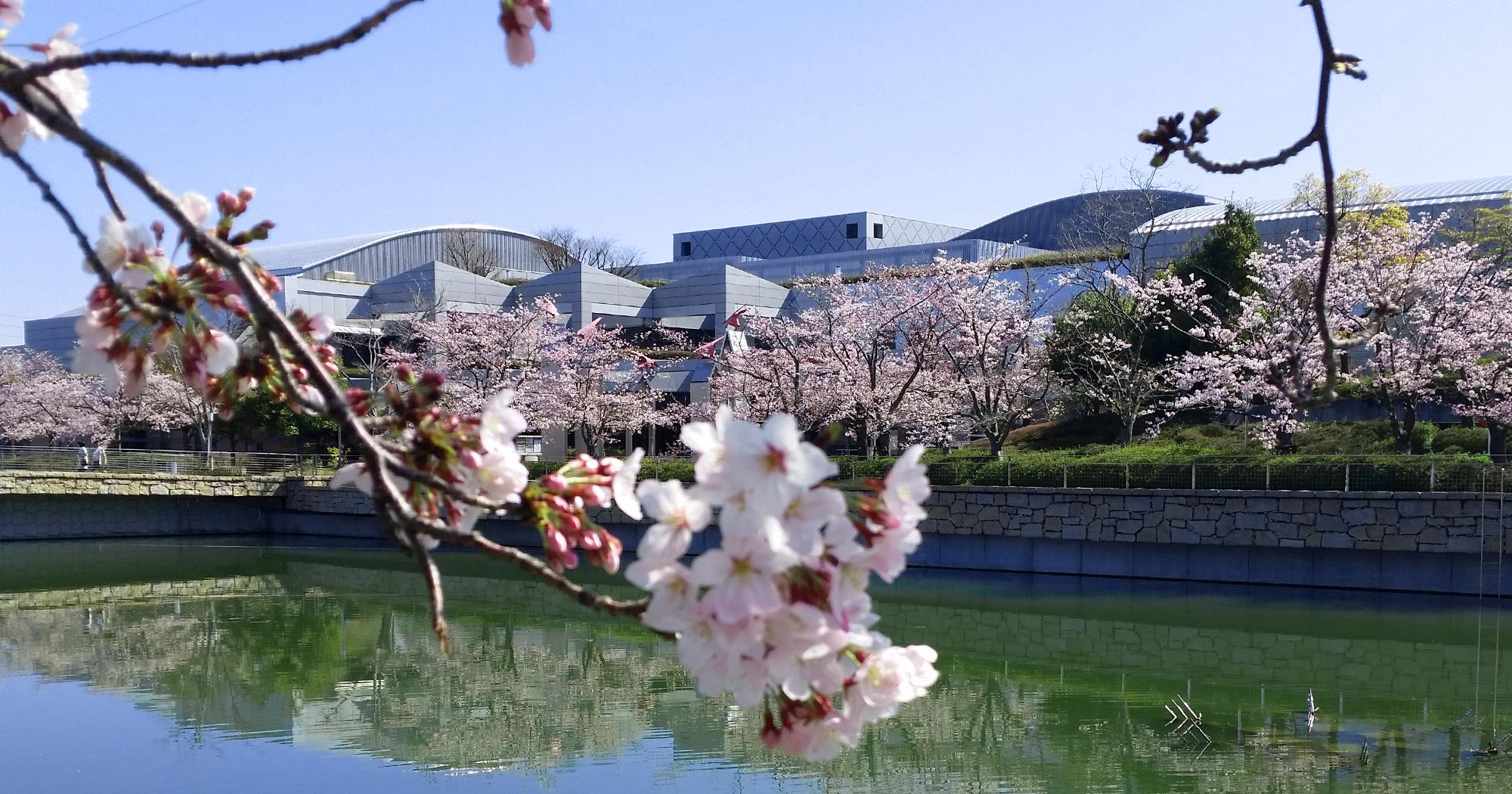 泉佐野市立文化会館(愛称:エブノ泉の森ホール)